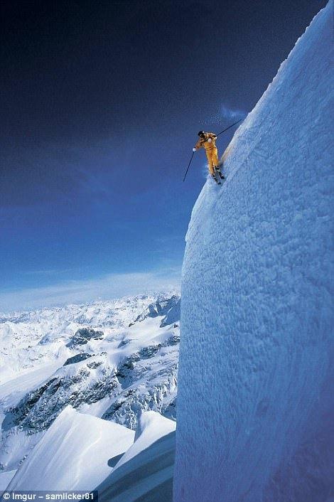 Альпинисты взбираются на 750-летнюю секвойю в Калифорнии.