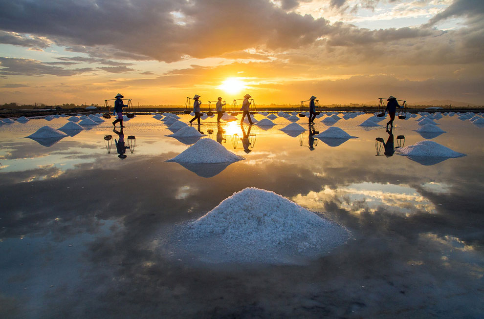 Пингвины в Антарктиде . (Фото Neal Piper):