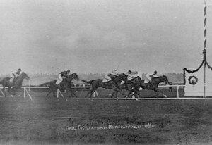 Лошадь Грымза выигрывает приз государыни императрицы.