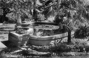 Сочи. Дендрарий, Бассейн у розовой площадки. Фото И.Н. Панова.