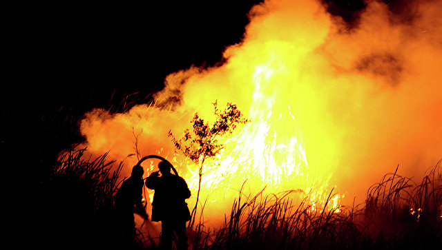 ВЧили объявлен красный уровень опасности из-за лесного пожара