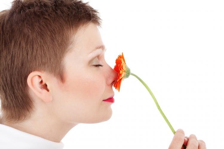 Ученые узнали, почему люди по-разному воспринимают ароматы