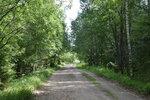Дорога в Мирславль от Кстов