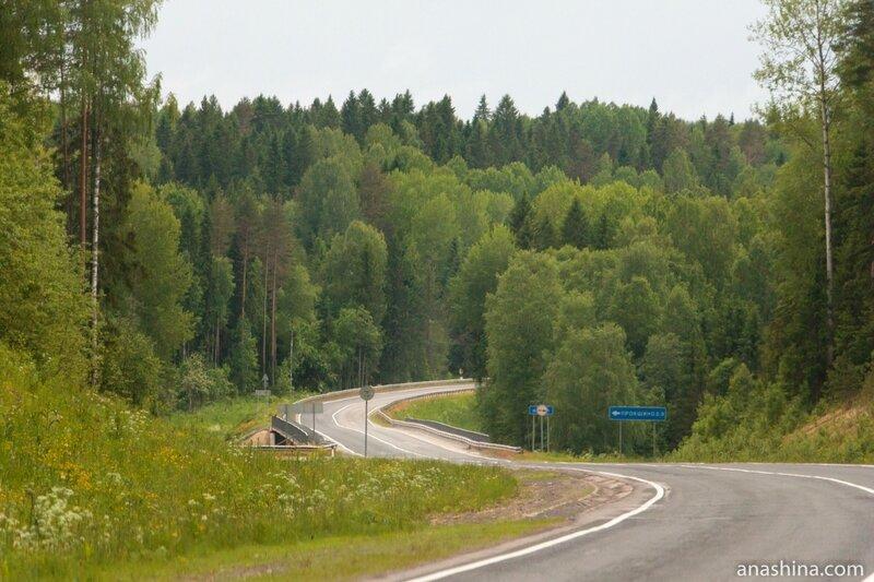 Автодорога А-119 на севере Вологодской области