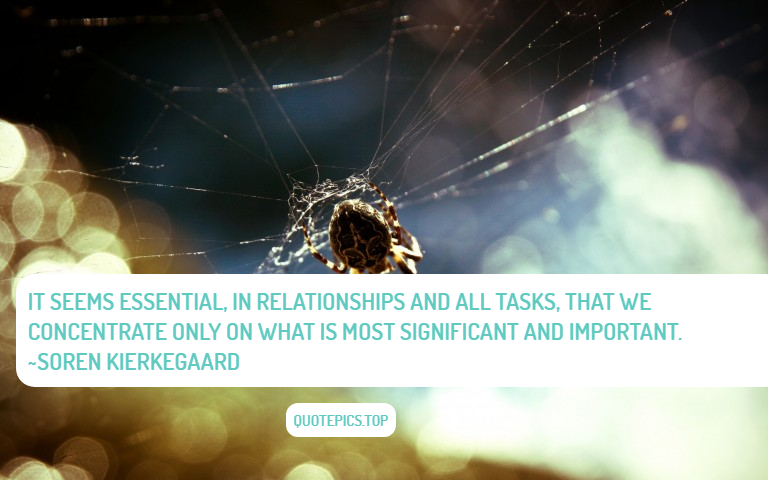 It seems essential, in relationships and all tasks, that we concentrate only on what is most significant and important. ~Soren Kierkegaard