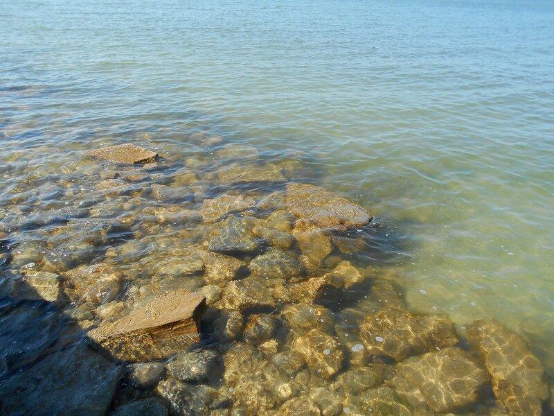 Прозрачность мартовской спокойной воды Азовского моря ... DSCN1246.JPG