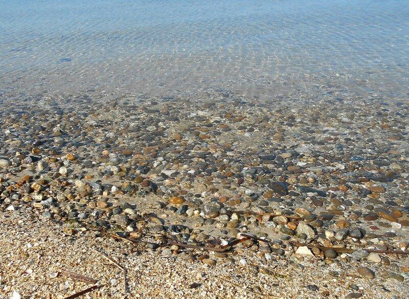 Прозрачность мартовской спокойной воды Азовского моря ... DSCN1248.JPG