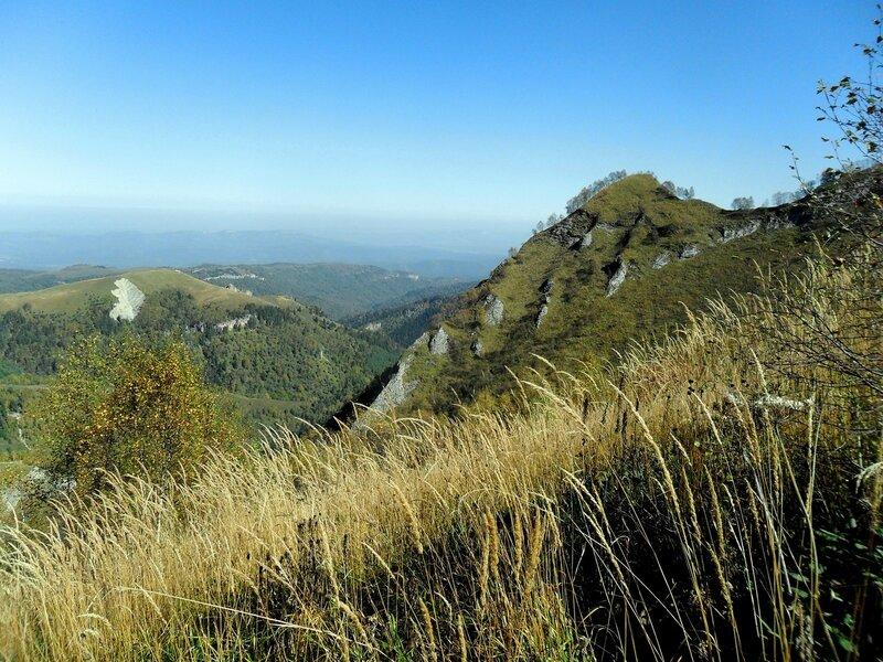 В горах, средь осенней, средь травы ... SAM_3357.JPG