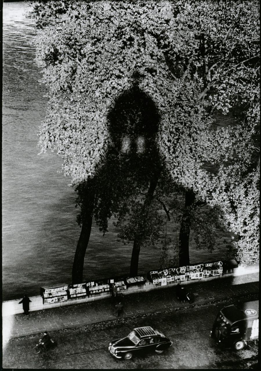 1956. Тень Института Франции. Париж