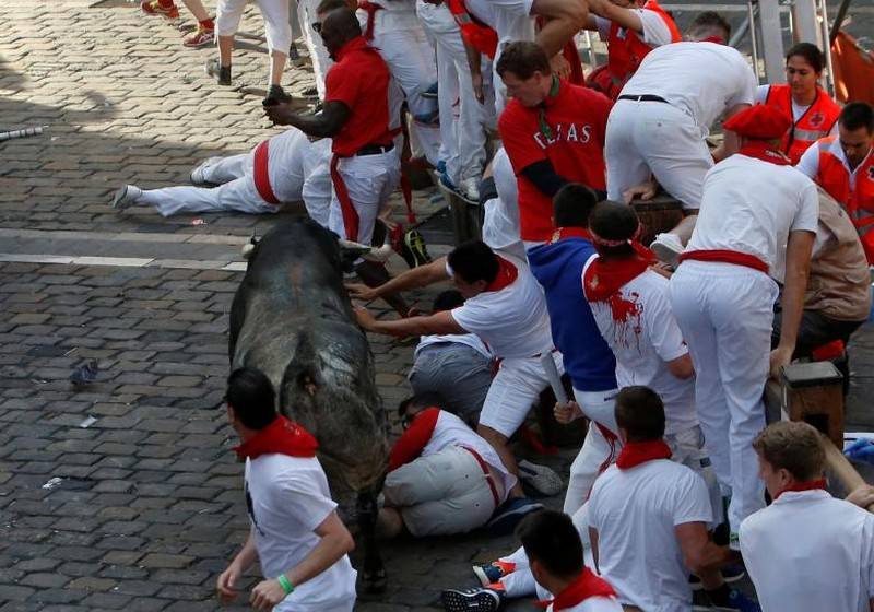Ежегодный забег с быками в Испании