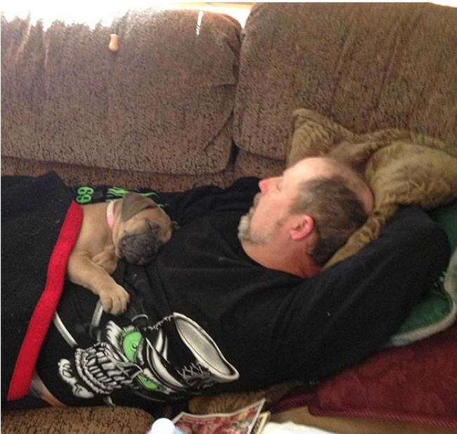 © shoey713  Раньше мой папа нехотел собаку, атеперь спит вот так: