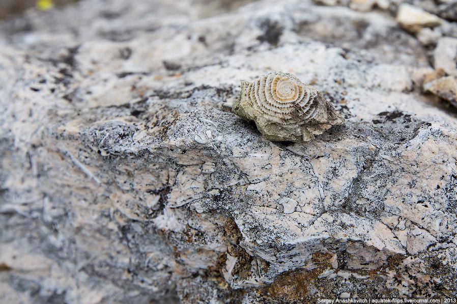 22. Белая скала, вид с трассы. Именно такой ее видит большинство проезжающих мимо людей.