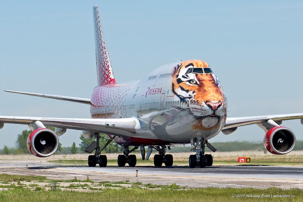 4. Всего во флоте у «России» сейчас 7 Boeing-747, но с тигром, понятно, только один.