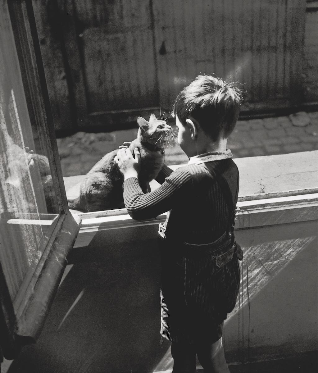 1947. Кошка смотрителя