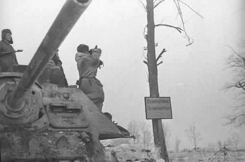Советская САУ СУ-85 в р-не Красного Села. Ленинградская обл., январь 1944 года.
