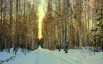 Уйти в лесную тишину...