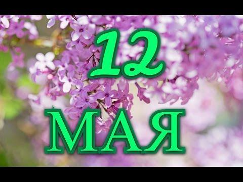 Открытки С днем медсестры! 12 мая. Сирень открытки фото рисунки картинки поздравления