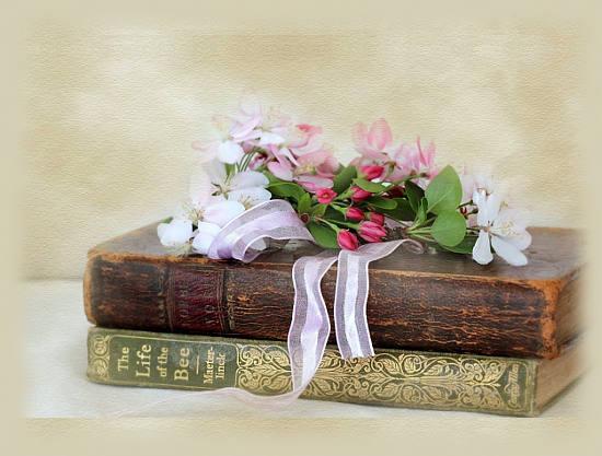 Открытка С Днем библиотек! Цветы на книгах