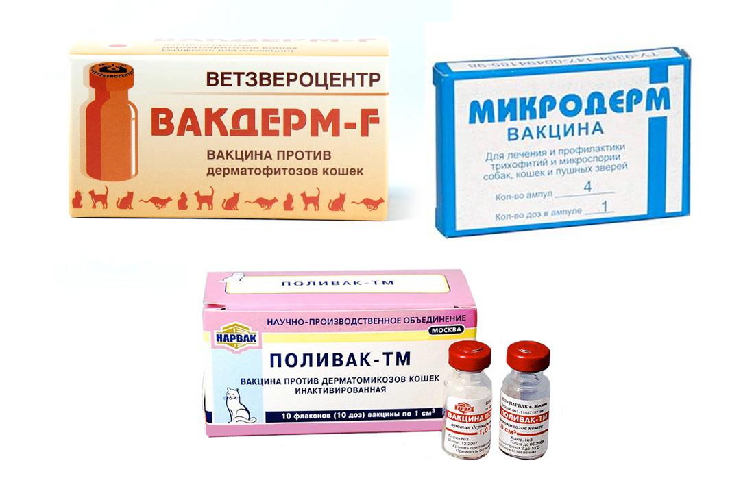 вакцины от стригущего лишая