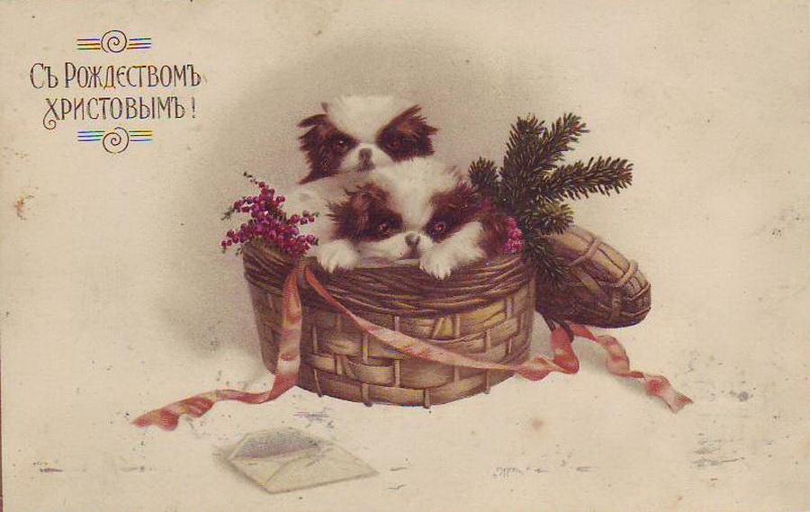 Поздравительные открытки дореволюционные
