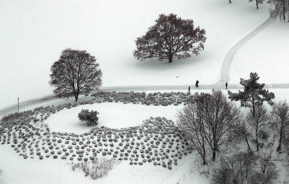 10. Снежные пейзажи в районе гор Гарц, Германия. (Фото Julian Stratenschulte):