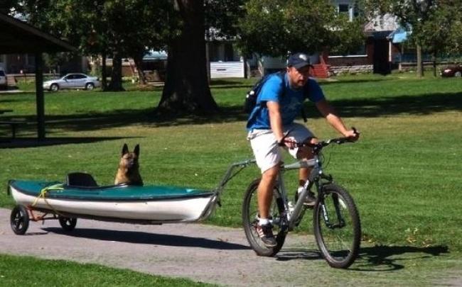 © Meatybone  Услепой трехногой собаки Келлер необыкновенный хозяин. Джош увлекался сваркой ме