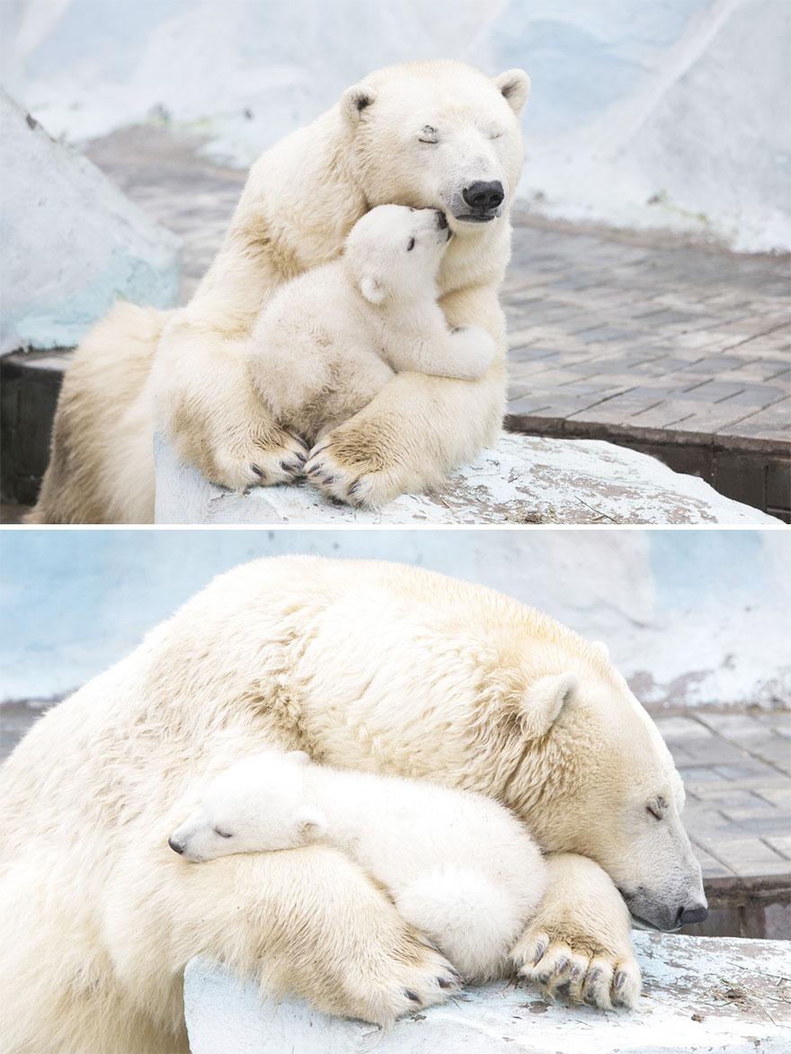 «Иди обниму!»