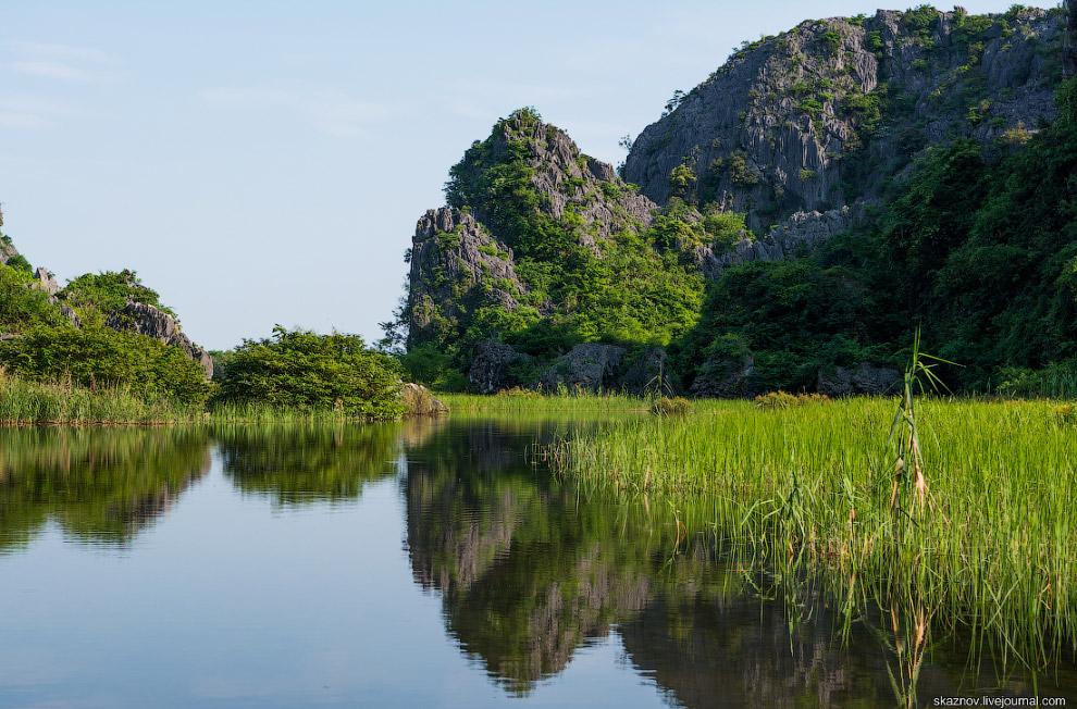 10. Сидя в лодке, можно понаблюдать за жизнью речных животных, проследить взором за летящими аи