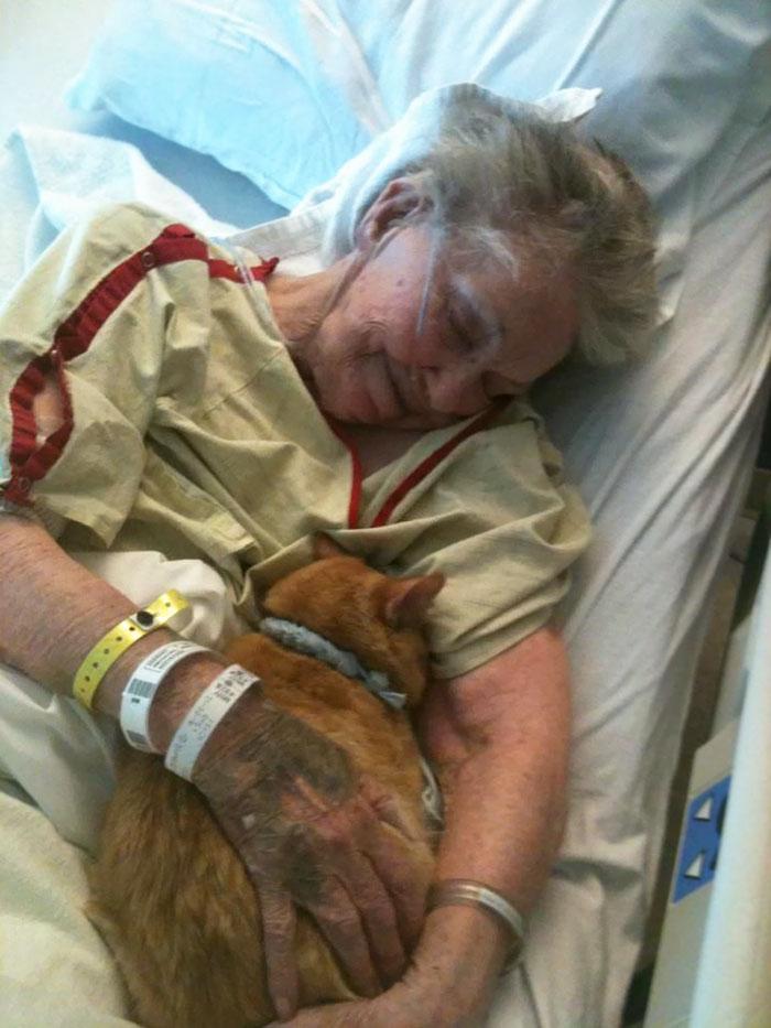 Ее предсмертным желанием было увидеть лучшего друга — кота Оливера — в последний раз, чтобы попрощат