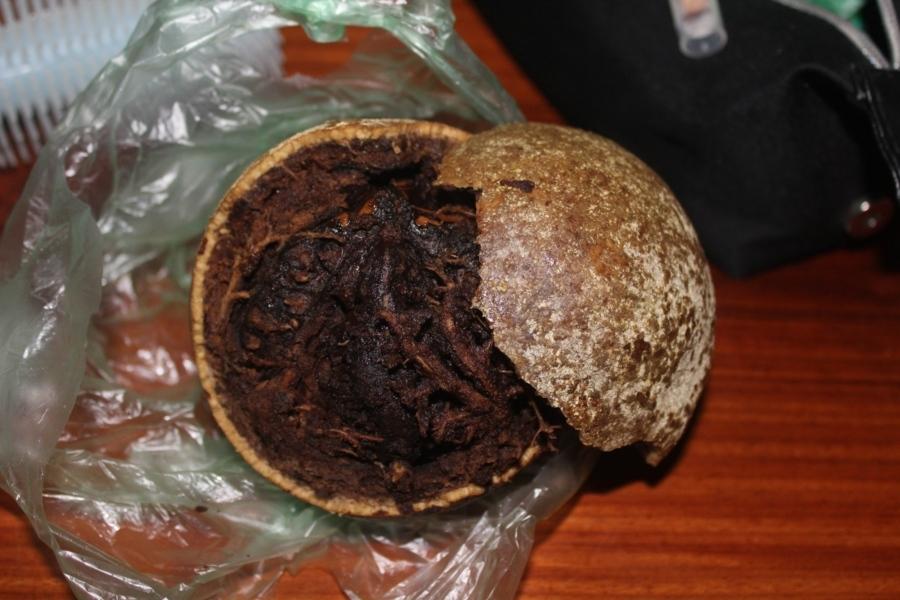 Данный фрукт встречается в ЮВА очень редко, я покупал один раз в Камбодже и один раз в Таиланде (где