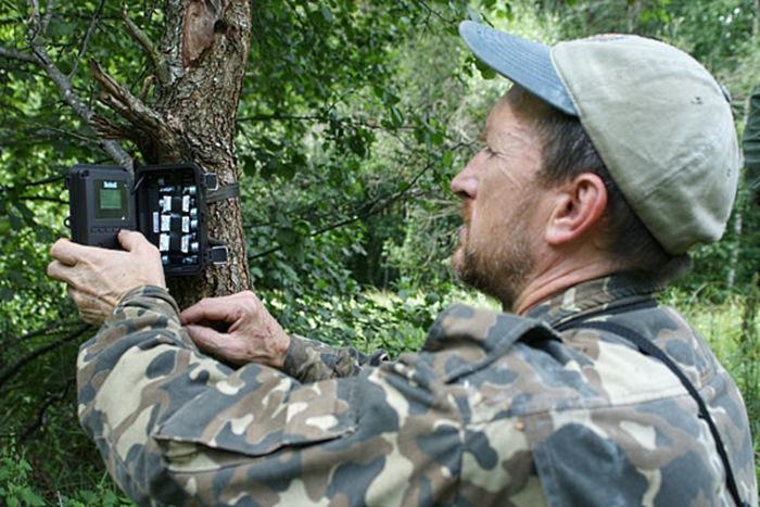 Он установил фотоловушки возле Чернобыля. Камера зафиксировала невероятное! (30 фото)