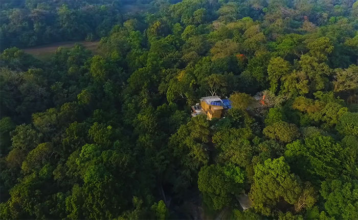 Изначально площадь заповедника составляла чуть больше 26 гектаров, но супруги Малхотра постоянно доб
