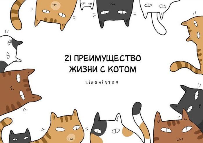Преимущества жизни с котом в веселых комиксах (21 фото)
