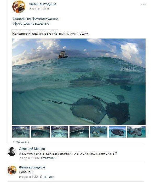 Смешные комментарии и высказывания из социальных сетей  (25 фото)
