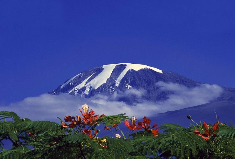 Красивое фото горы Килиманджаро.jpg
