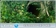 Букашки. Приключение в Долине муравьев / Minuscule - La vallée des fourmis perdues (2013) BDRip 1080p + 3D (HOU)