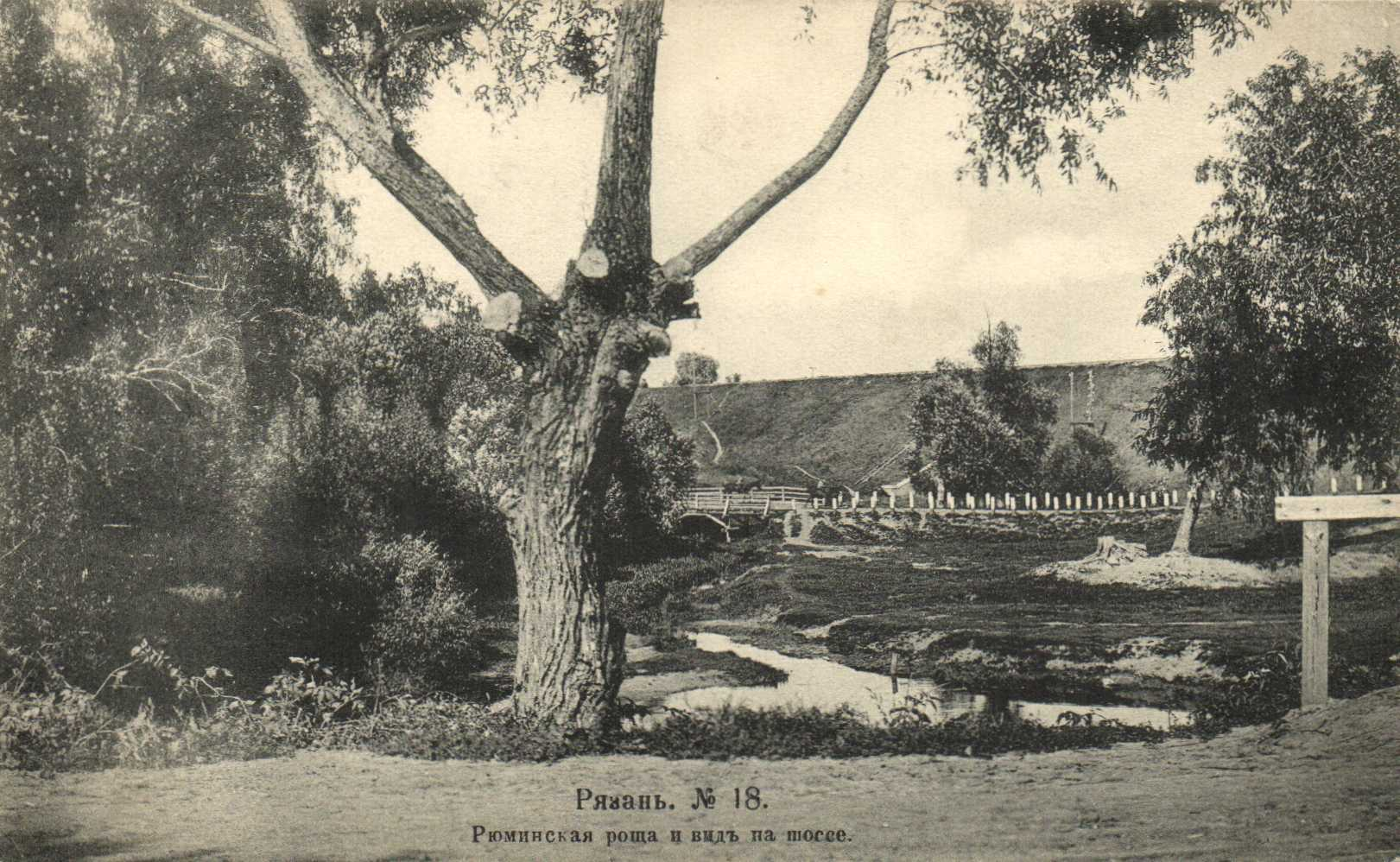 Рюминская роща и вид на шоссе