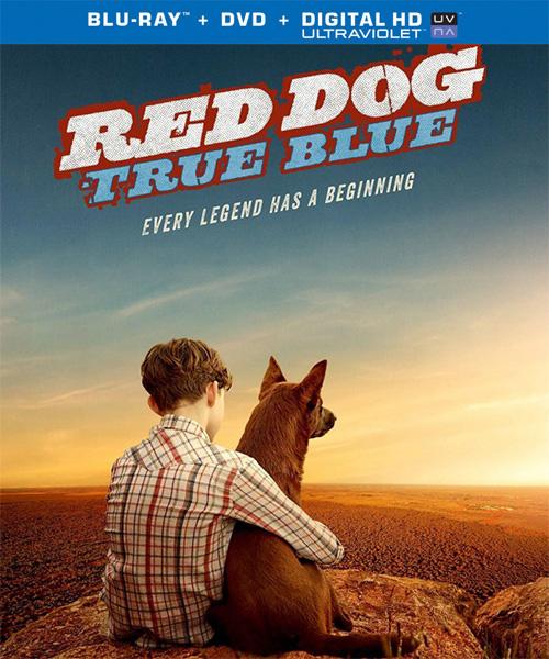 Рыжий: вся правда / Red Dog: True Blue (2016/BDRip/HDRip)