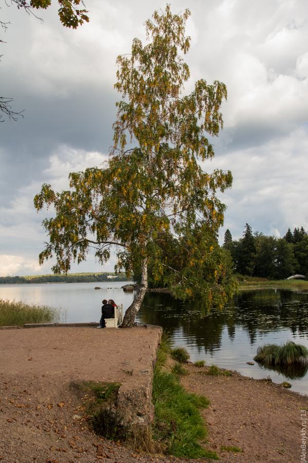 alexbelykh.ru, парк Монрепо, скамейка в Монрепо