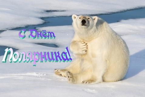 Открытки. С Днем полярника!Поздравление от мишки открытки фото рисунки картинки поздравления