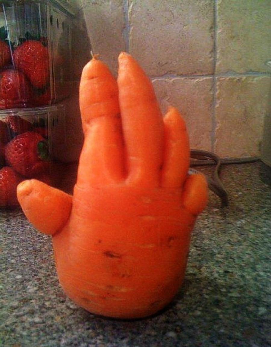 Дай пять морковке.