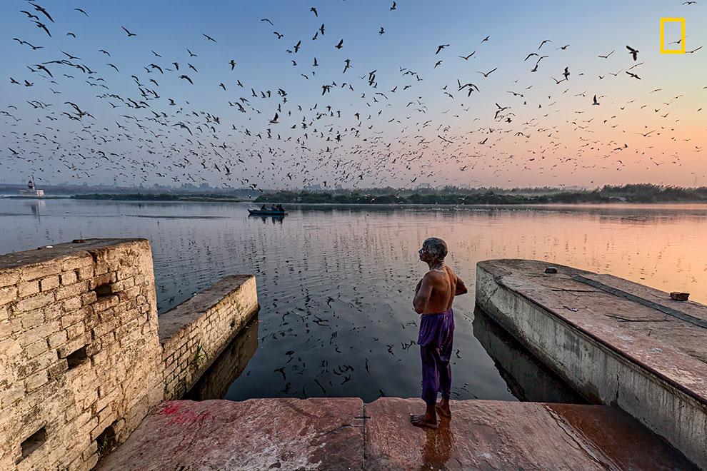 «Священное купание». Йогеш Гупта: «Река Ямуна грязнее всего в месте, где проходит Дели. Это вторая с