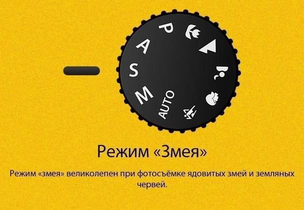 19554619_1745312705493889_5390724019480782333_n.jpg