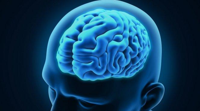 Ученые поведали обопасном воздействии диабета первого типа намозг человека