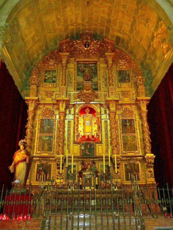 Malaga.  El Catedral. (10).jpg