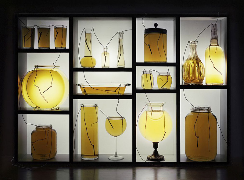 Vinegar Batteries with Glassware and Shelf, 2013