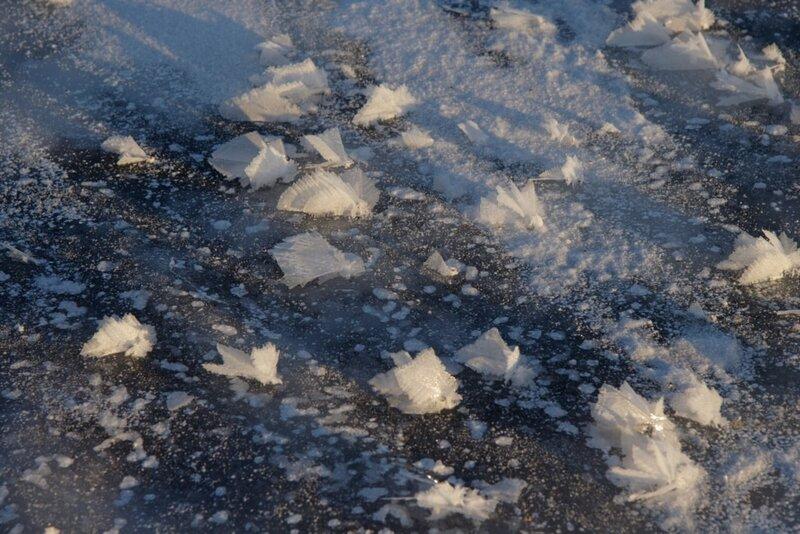 Канал имени Москвы зимой
