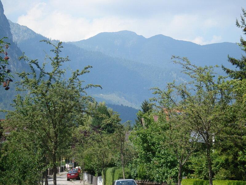 Зелень современных кварталов города