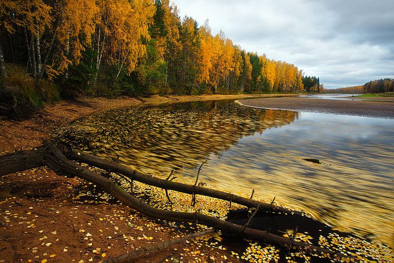 Голубое озеро в Сергиевском районе Самарской области. Фотография пользователя под ником MulTicK.