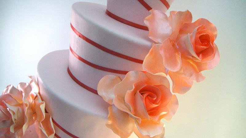 Красивый торт с розами.  Международный день торта!
